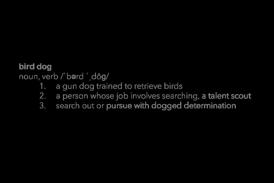 Introducing Base Bird Dog